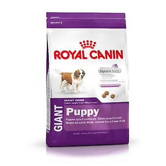 Royal Canin Giant Puppy (Honden , Voeding , Droogvoer)
