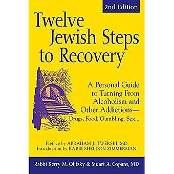 Douze étapes juifs de récupération: un Guide personnel au tournant de l'alcoolisme et autres toxicomanies - drogues, nourriture, jeux de hasard, sexe...