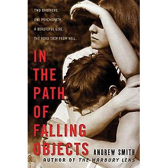 In the Path of Falling Objects by Reader in Nineteenth-Century Litera