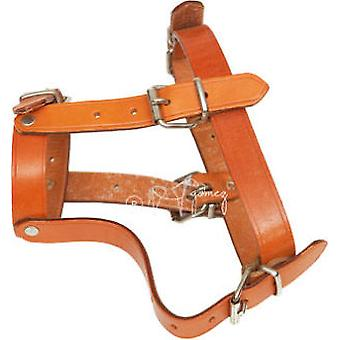 Hermanos Gómez Large Leather Dog Muzzle (Dogs , Collars, Leads and Harnesses , Muzzles)