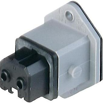 Mains connector ATT.LOV.SERIES_POWERCONNECTORS STAKEI Socket, vertical vertical Total number of pins: 2 + PE 16 A Grey