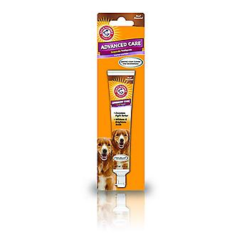ARM & Hammer tartaro controllo cane manzo dentifricio