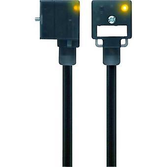 Escha 8047805 VA41-24.2-5/S370 Black Number of pins:3+PE wire