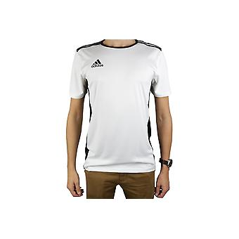 Adidas entrada 18 JSY CD8438 Mens T-Shirt