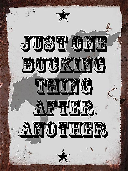 Vintage Metal Wall Sign - Just one bucking thing