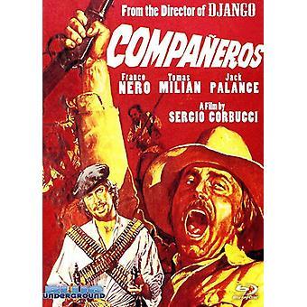 Companeros (engelsk Version) [DVD] USA importerer