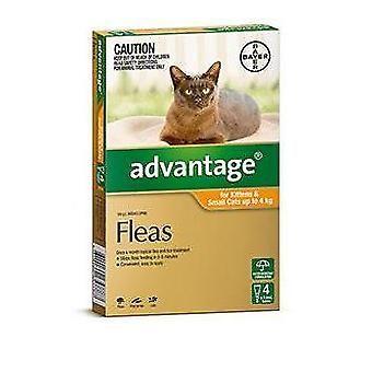 Advantage Orange 4 Pack Small Cat 0-4kg