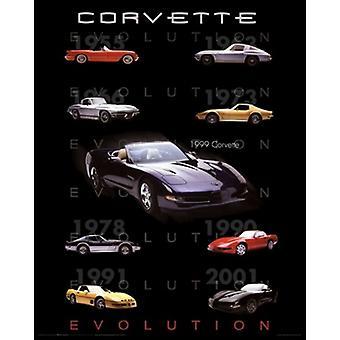 Corvette Evolution Poster affisch Skriv