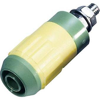 Stäubli XUB-G Jack el enchufe, diámetro de perno vertical vertical: 4 mm verde amarillo 1 PC