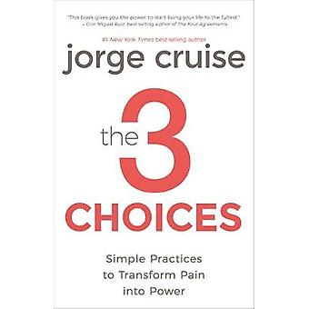 The 3 Choices - Simple Practices to Transform Pain into Power by Jorge