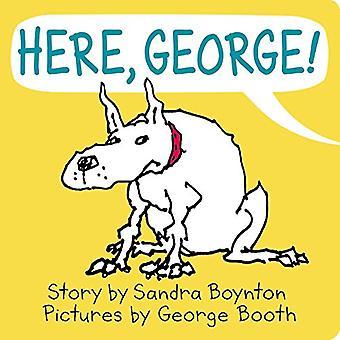 Here, George! [Board book]