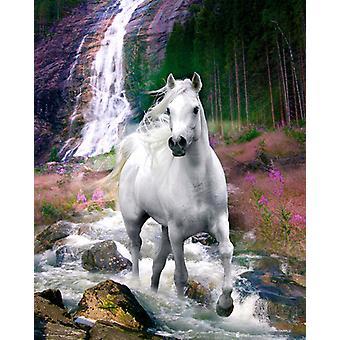 Bob Langrish Wasserfall Mini Poster 40x50cm