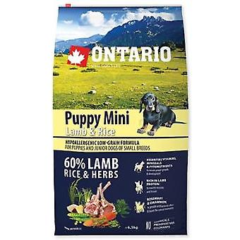 Ontario Mini Puppy Lamb & Rice (Dogs , Dog Food , Dry Food)
