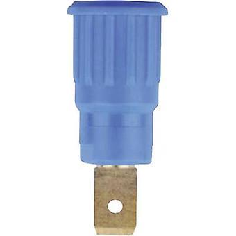 Stäubli SEB4-F6,3 Safety jack socket Socket, build-in Blue 1 pc(s)
