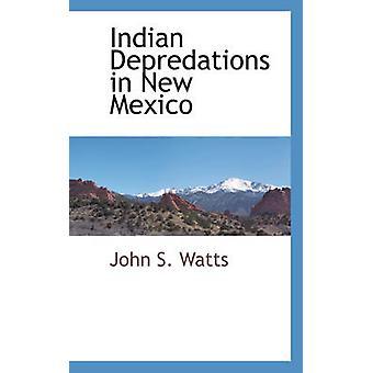 ワット ・ ジョン S でニュー メキシコ州のインドの略奪