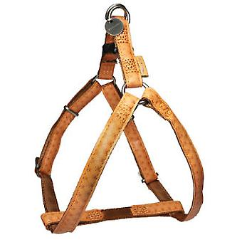 Mac Leather Harness Mac Leather Brown (Dogs , Walking Accessories , Harnesses)