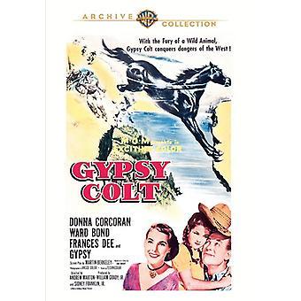 Sigøyner Colt [DVD] USA import