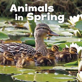 Animals in Spring by Kathryn Clay - 9781474712392 Book