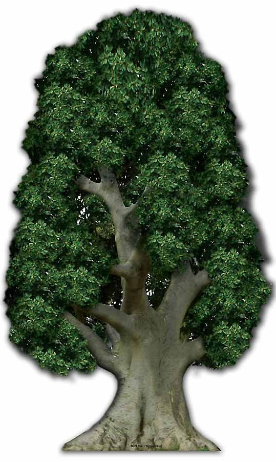 Large Tree - Cardboard Cutout / Standee
