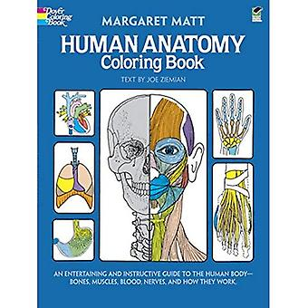 Human Anatomy Colouring Book