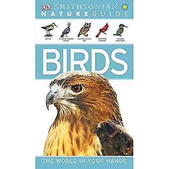 Przewodnik natura: Ptaki (Smithsonian natura przewodniki)