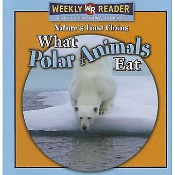 What Polar Animals Eat
