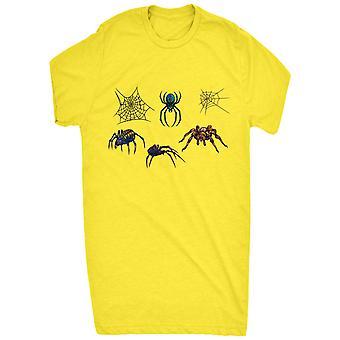 Renowned venomous spider collection arachnophobia
