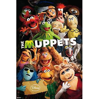 Muppets-Hfe-Poster-Plakat-Druck