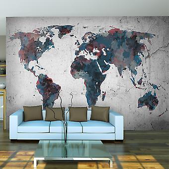 Papel de parede - mapa-múndi na parede