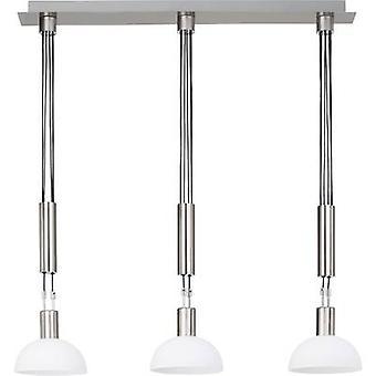 Pendant light LED E14 13.5 W Brilliant Robinia