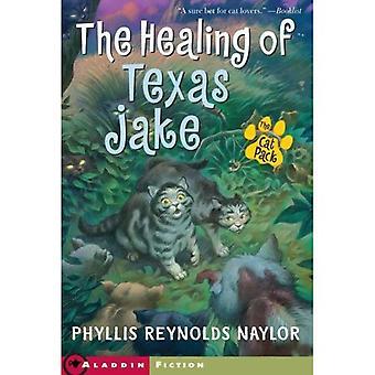 Heilung von Texas Jake, das Cat Pack (Aladdin Fiction)