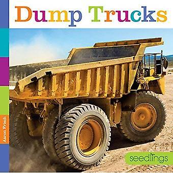 Camions à benne basculante (semis)