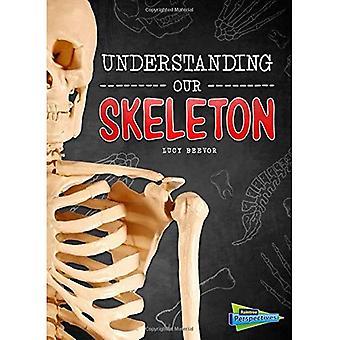 Verständnis unser Skelett (Gehirn, Körper, Knochen!)
