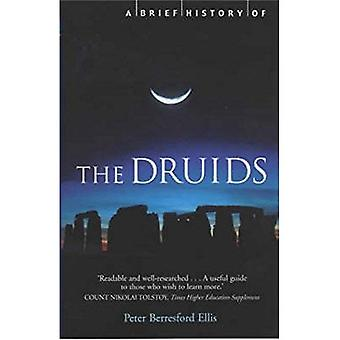 A Brief History of the Druids (Brief Histories) (Brief Histories)