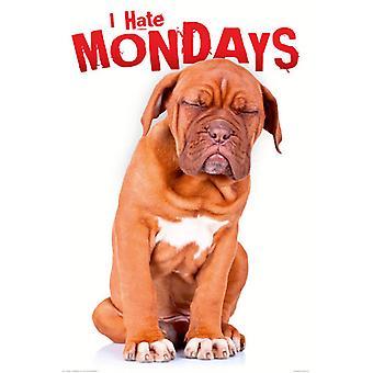 Poster - Studio B - I hate Mondays 36x24