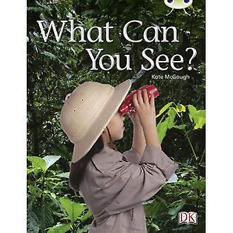 Ce que vous voyez? (Rouge A) NF