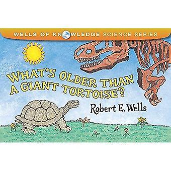 Vad är äldre än en gigantisk sköldpadda?