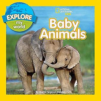 Entdecken Sie meine Welt Tierbabys