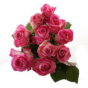 beautiful pink bouquet of roses, small | Height: 60 cm