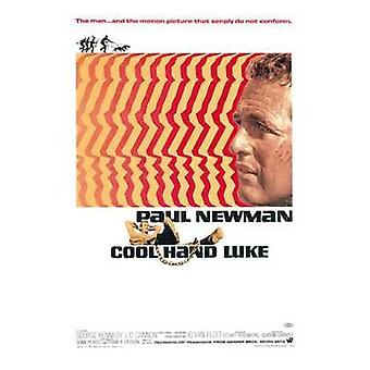 Cool Hand Luke Movie Poster (11x17)
