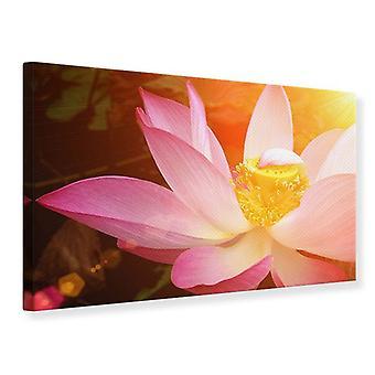 Leinwand drucken schließen sich Lotus