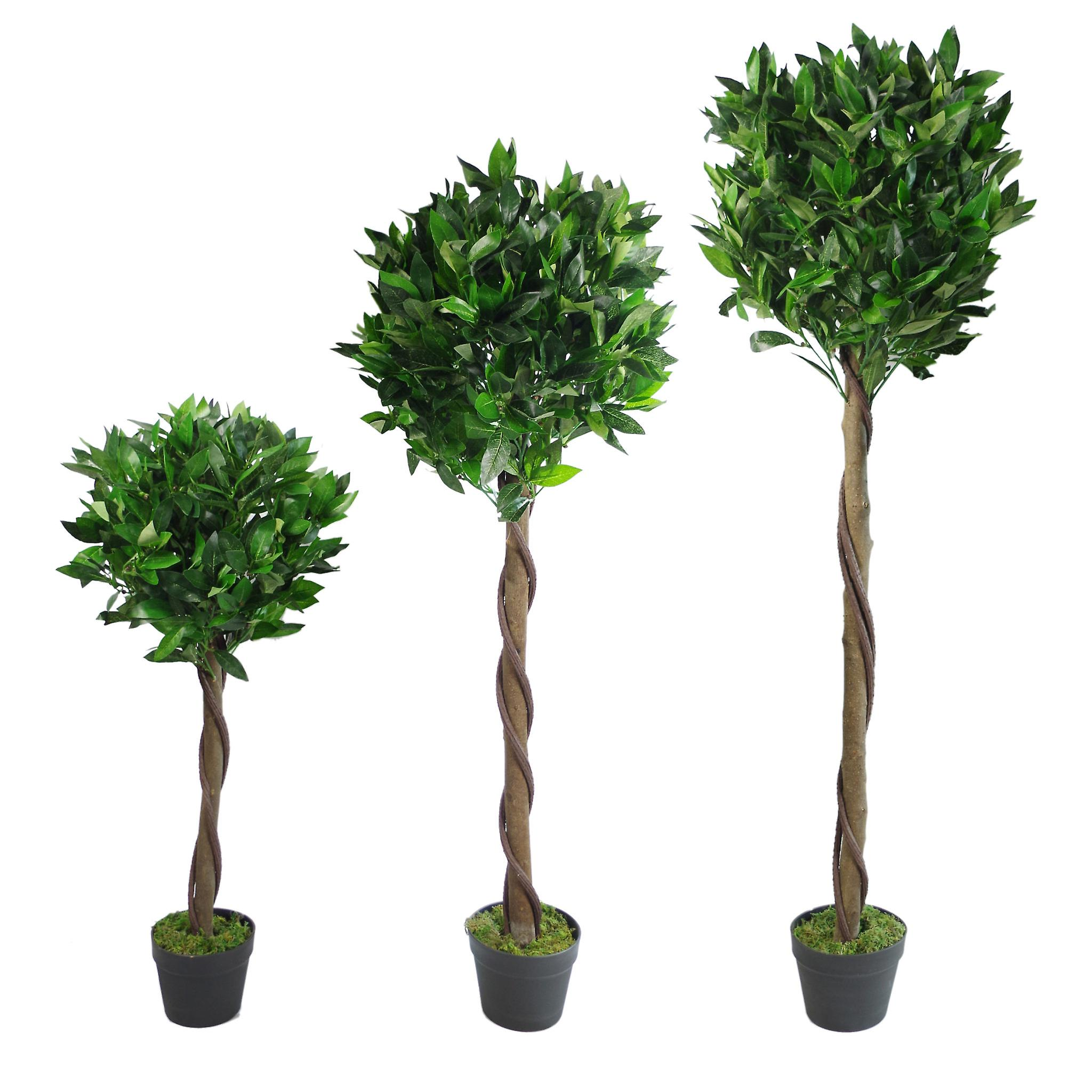 150cm (5ft) Twist Natural Trunk Artificial Topiary Bay Laurel Ball Tree