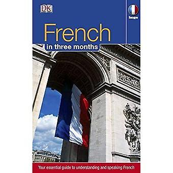 Franska i 3 månader (Hugo i tre månader)