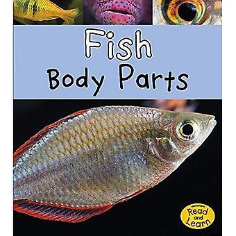 Pesce (parti del corpo animale) di parti del corpo