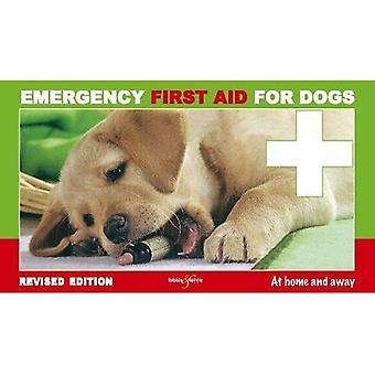 Eerste noodhulp voor honden - thuis en weg