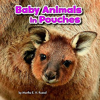 Baby Animals and Their Homes Pack A of 4 (Little� Pebble: Baby Animals and Their Homes)