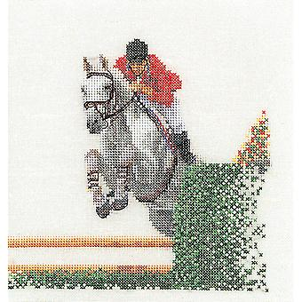 Showjumper On Aida Counted Cross Stitch Kit 6 1 4