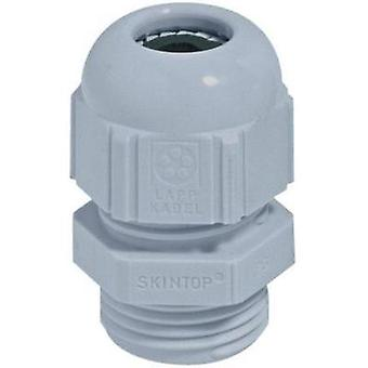 Cable gland M50 Polyamide Silver-grey (RAL 7001)