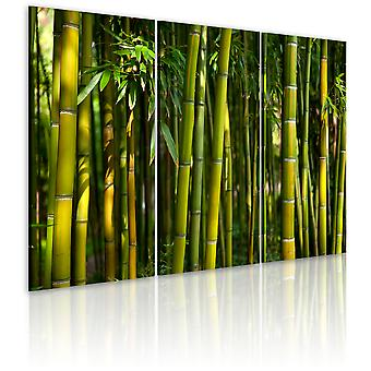 Artgeist Canvas Print Green bamboo  (Decoration , Pictures / Frames)