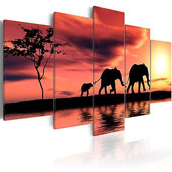 Leinwand Drucken - afrikanische Elefanten Familie